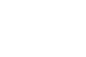 ACT OF TRAVEL_Logo_Raoul Fokké_2_Wit_vector